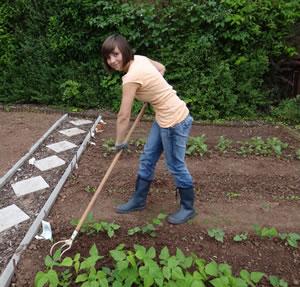 Gemüsegarten anlegen - Ideen zur Bepflanzung - Hausgarten.net